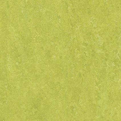 Linoleumboden muster  Bodenbelag / Muster